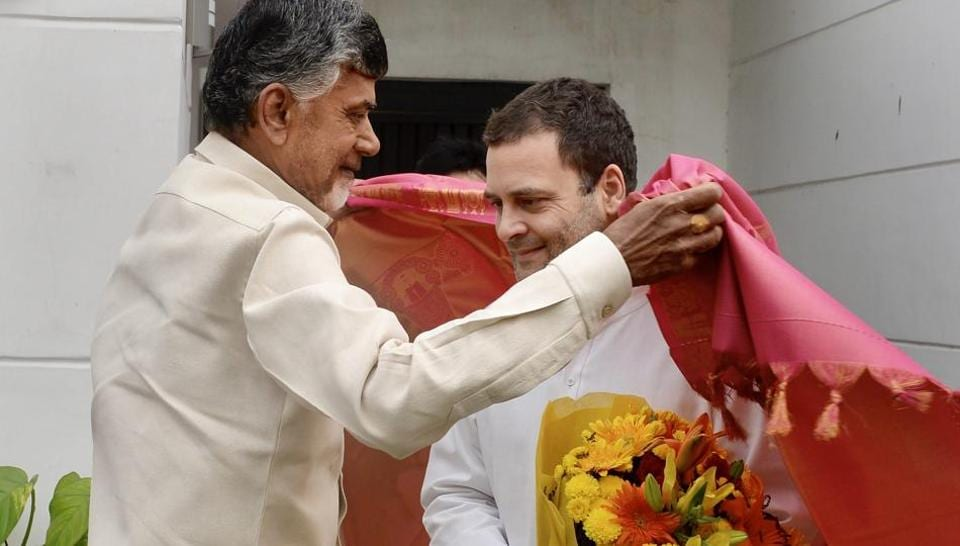 Both Rahul Gandhi and Chandrababu Naidu underlined that the primary objective was to defeat the BJP.