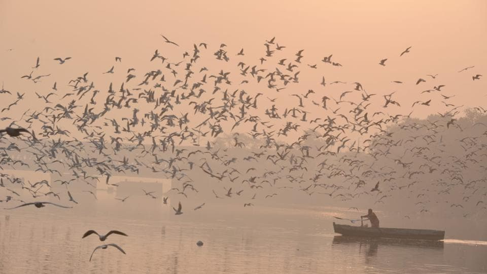 An early morning view off the Yamuna river on Tuesday, in New Delhi. The capital seemed choking on Monday as air quality deteriorated sharply compared to Sunday. A change in wind pattern had swept in smoke from farm fires in Punjab and Haryana, shrouding the national capital region (NCR) in a thick haze made of tiny particulate matter that can penetrate deep into the lungs and cause health problems. (Biplov Bhuyan / HTPhoto)