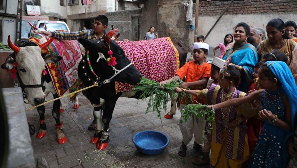 Children enjoying Vasu Baras the first day of Diwali celebrations in Maharashtra at Kasba Peth. It is observed on the 12th day of the waning phase of the moon( ie the krishna paksha) of Ashwin month as per the traditional Marathi calendar. This festival is dedicated to the worship of cows. (Rahul Raut/HT PHOTO)