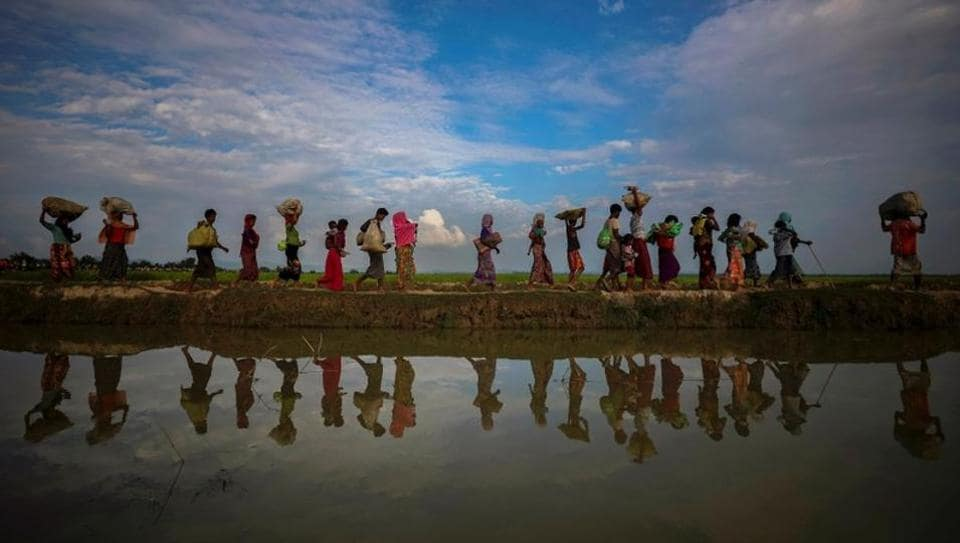 Rohingya refugees are reflected in rain water along an embankment next to paddy fields.