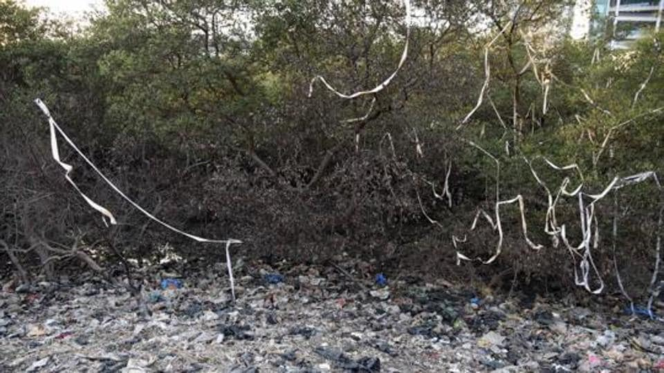 Mangroves have been destroyed by dumping and burning garbage near Vashi railway station.