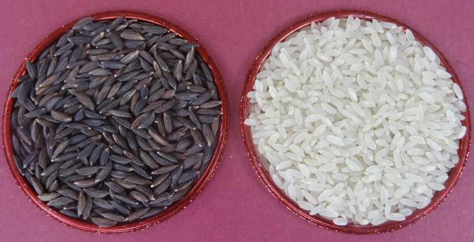 The rice with and without its husk.