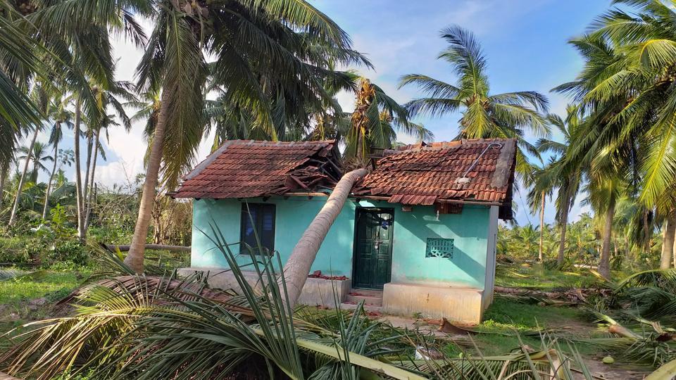 Image result for gaja storm affected area