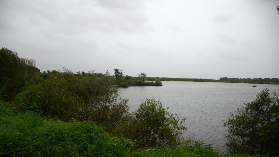 Wetlands in Nerul are under threat from urbanisation