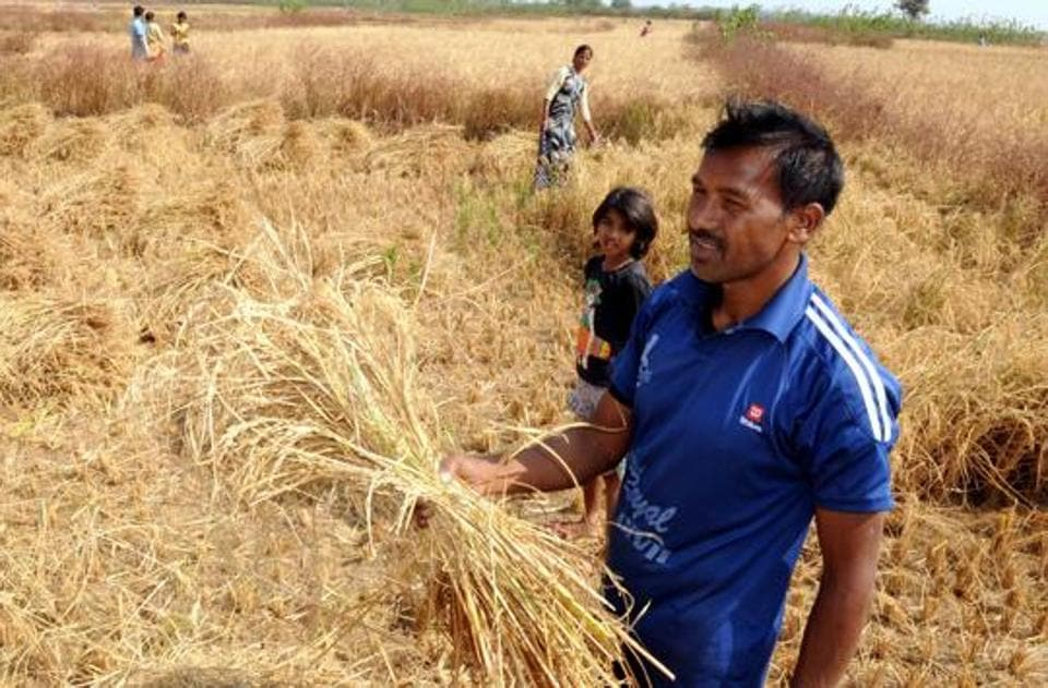 State Government,Insurance Claim Rule,Insurance Claim rule for Farmer