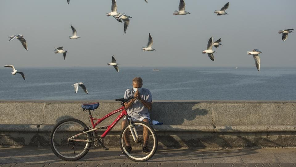 A man performs morning exercise as a flock of Seagulls fly over him at Marine Drive in Mumbai, Maharashtra on November 17, 2018. (Pratik Chorge / HT Photo)