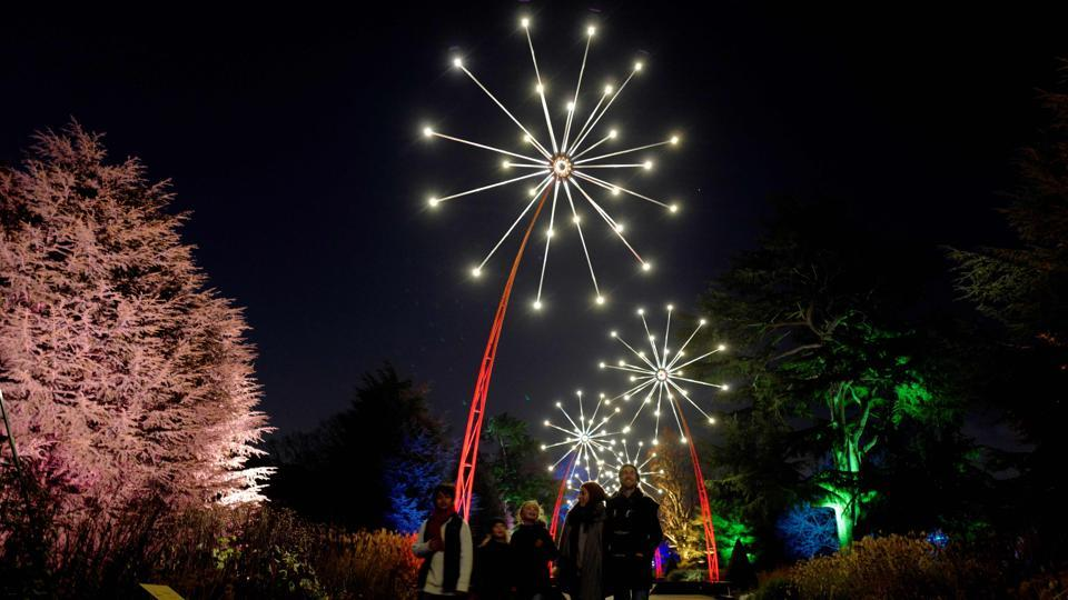 "Light displays are pictured during a photocall at Kew Gardens in south west London, during an event to promote the launch of the ""Christmas at Kew Gardens"" event in England. (Tolga Akmen / AFP)"