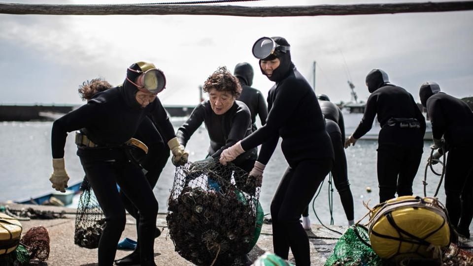 As they compare the hauls of shellfish they have gathered, the women -- who range from 60 to 80 years old -- could be mistaken for teenagers underneath the water, gliding gracefully in the dark depths of the Pacific. (Martin Bureau / AFP)