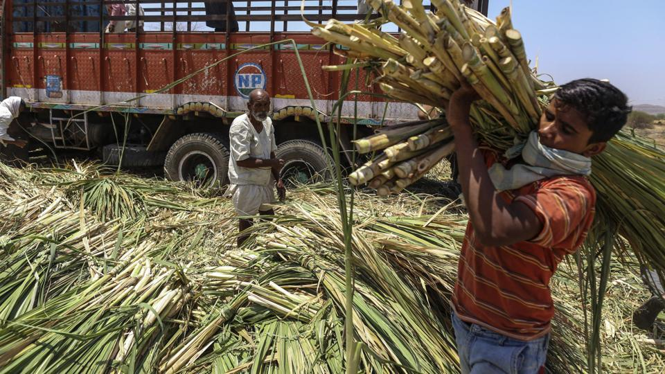 A deal on sugar would be the second such agricultural commodity agreement recently after China said it would import non-basmati rice, India's ministry of commerce said.