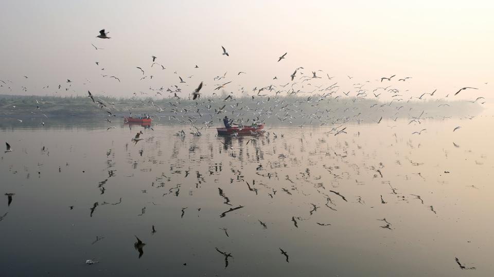 delhi,national capital,misty