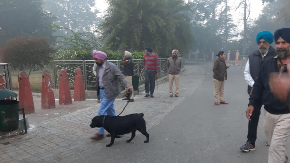 amritsar,company bagh amritsar,punjab news