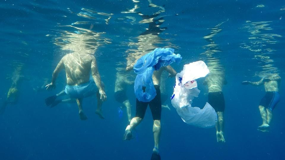 "Plastic bags float as swimmers prepare to emulate sea creatures in an effort to send a message that pollutants such as bottles and plastic bags will entangle marine animals. A group of 50 swimmers, including Absi, recently organized the 4.6-km swim. ""We see the violations are increasing and there is no deterrent,"" Abis said. (Hassan Ammar / AP)"