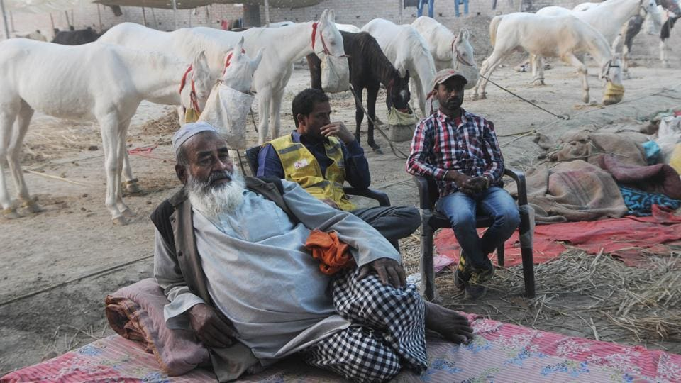 Sonepur fair,Sonepur cattle fair,Bihar fair