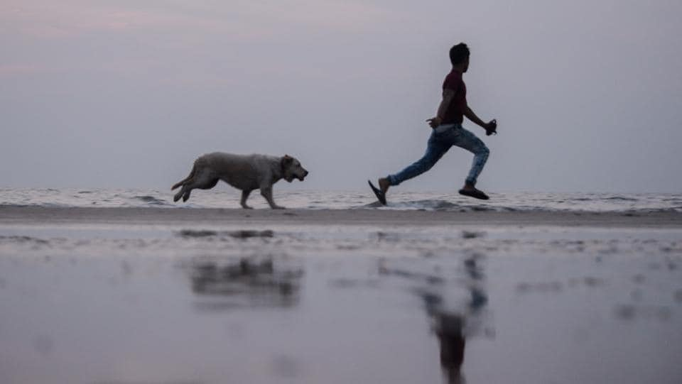 A man plays with his dog at Juhu Chowpatty in Mumbai, Maharashtra on November 28, 2018. (Ragul Krishnan / HT Photo)