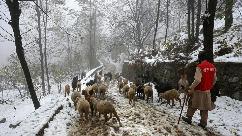 Kashmir,School,Snowfall