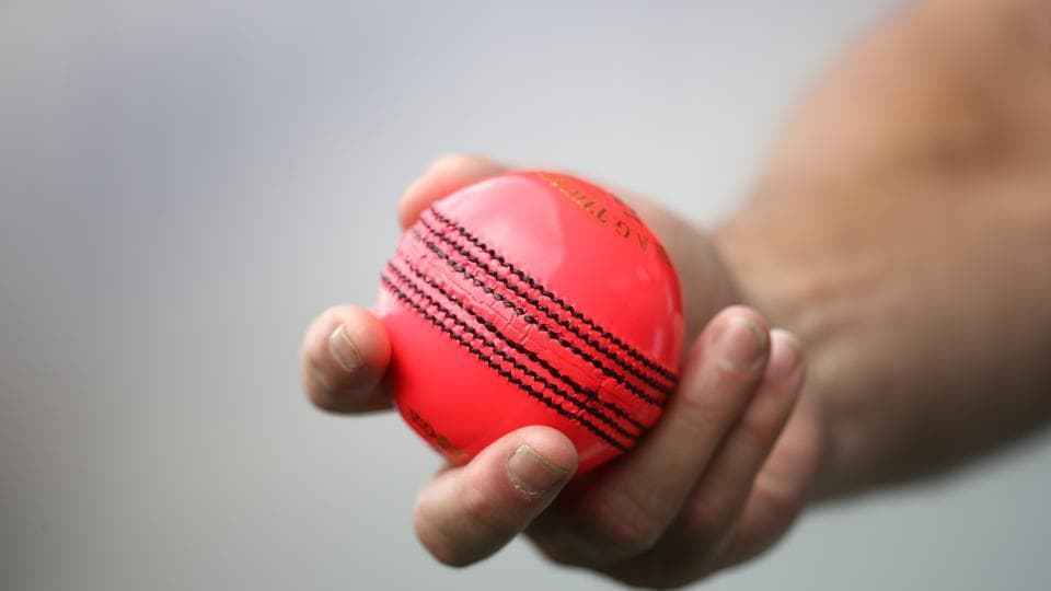 Representative Image - A picture of the Pink Ball that are used in Day-night Tests.