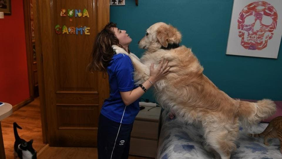Lopez plays with her dog at her apartment in Oviedo, Spain. In its fourth edition, the La Jolla event for surfers with disabilities features its first team competition for visually impaired female athletes, with Lopez representing Spain. (Eloy Alonso / REUTERS)