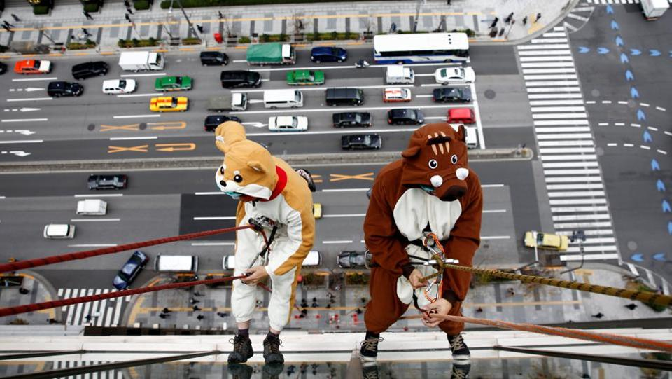Window cleaners, dressed as a dog (L) and a wild boar, this year and next year's Chinese zodiac animals, clean the windows of Ryumeikan hotel during a promotional event to celebrate the upcoming new year in Tokyo, Japan. (Kim Kyung-Hoon / REUTERS)