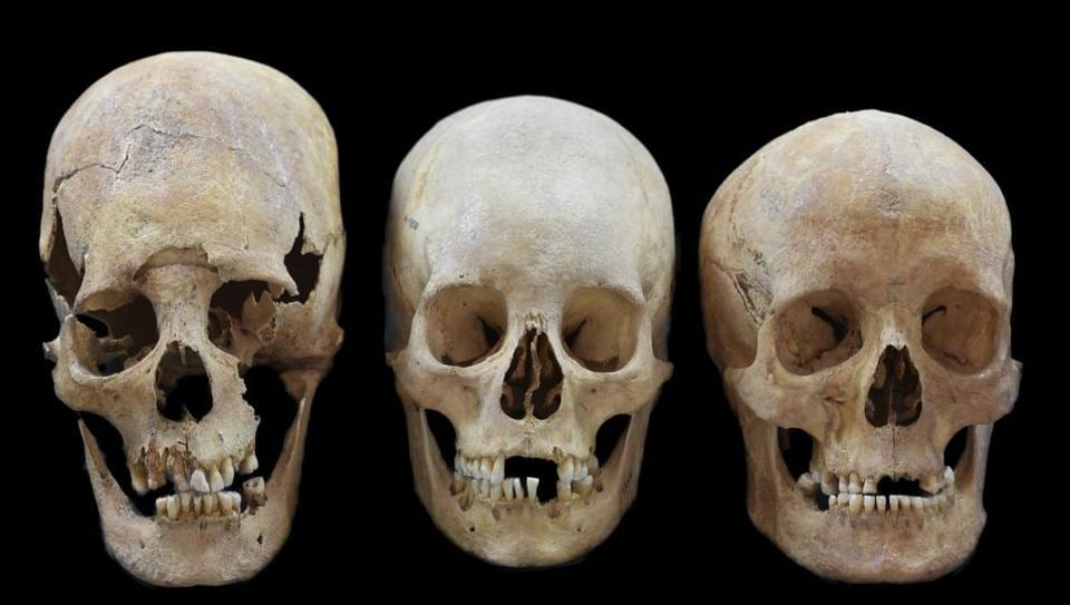 Tamil Nadu villagers spooked after 45 human skulls found dumped in graveyard