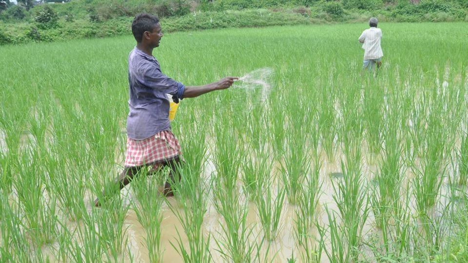 Madhya Pradesh,Loan waiver,MP farmers