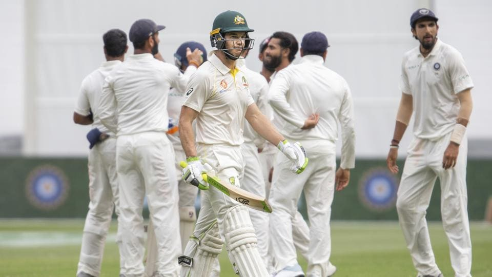 ind vs aus,india vs australia,tim paine