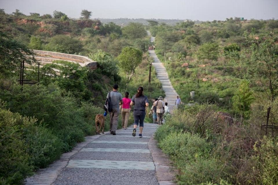 Residents will be carrying out the plant mapping activity at Aravalli Biodiversity Park. The activity will continue for two months.