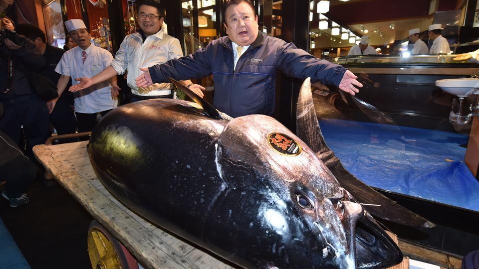 unusual coinage CABINDA 2 500 000 000 Reis 2018 Tuna fish world day