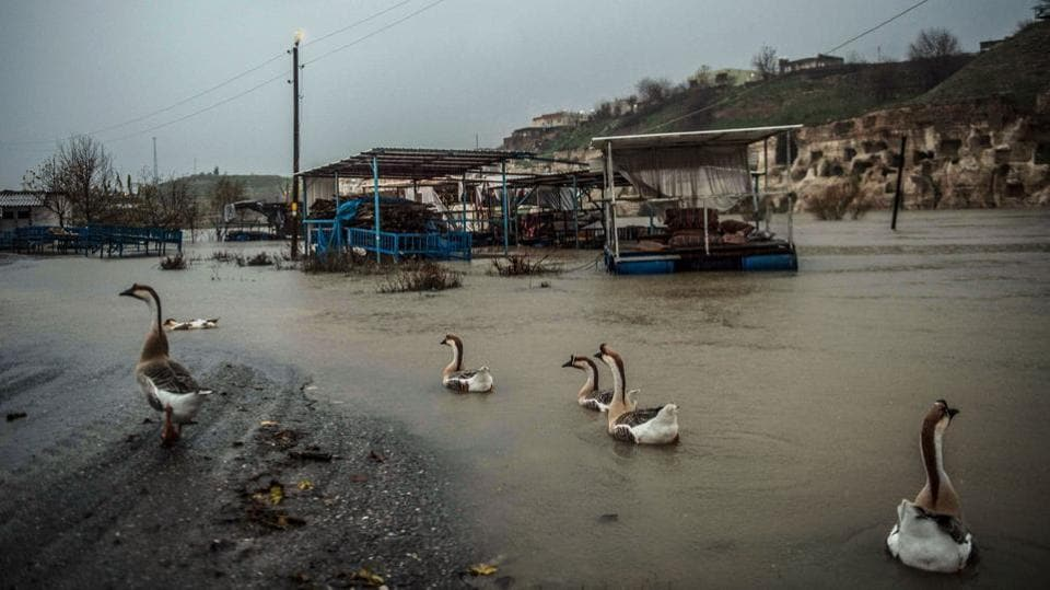 "Geese make their way through a flooded road in Hasankeyf. Akdeniz is also convinced that the dam will boost tourism, thanks to the renovation of the citadel and some caves escaping the rising waters. ""There will be boats, a cable car. We will have hotels,"" he says. ""Some of our young people are already starting to learn to dive. Diving into Hasankeyf, can you imagine?"" (Bulent Kilic / AFP)"