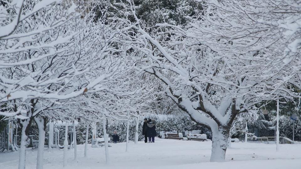 People walk in a park in the Greek capital Athens, blanketed Tuesday under snow. Deadly winter weather has blasted Europe, trapping hundreds of people in Alpine regions, whipping up high winds that caused flight cancellations and increasing the risks of deadly avalanches. At least 13 people have been killed in weather-related accidents in Europe over the last week, most of them from avalanches. (Thanassis Stavrakis / AP)