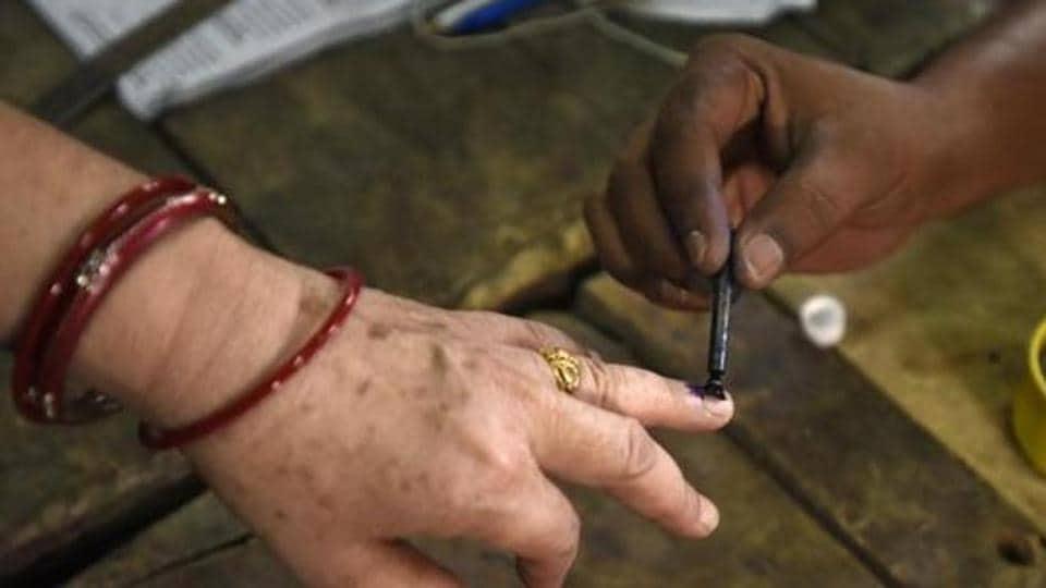 delhi electoral rolls,AAP,delhi BJP