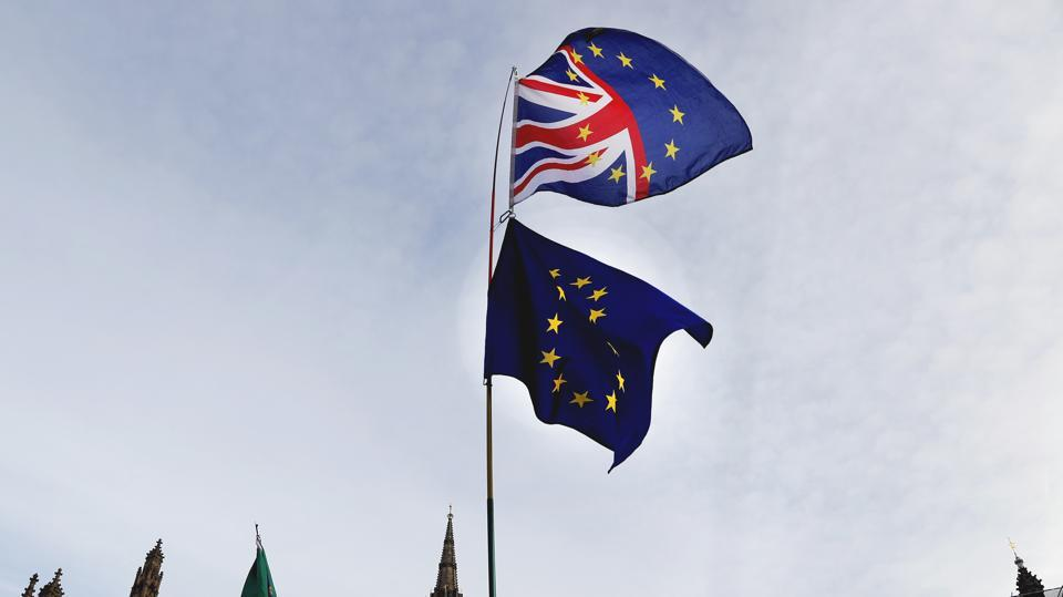 A Pro-European demonstrator raises flags to protest outside parliament in London on January 11.