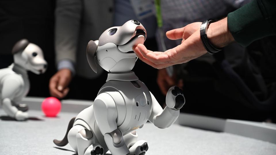 Attendees interact with the AIBO robotic companion dog at the Sony booth during CES 2019 consumer electronics show.