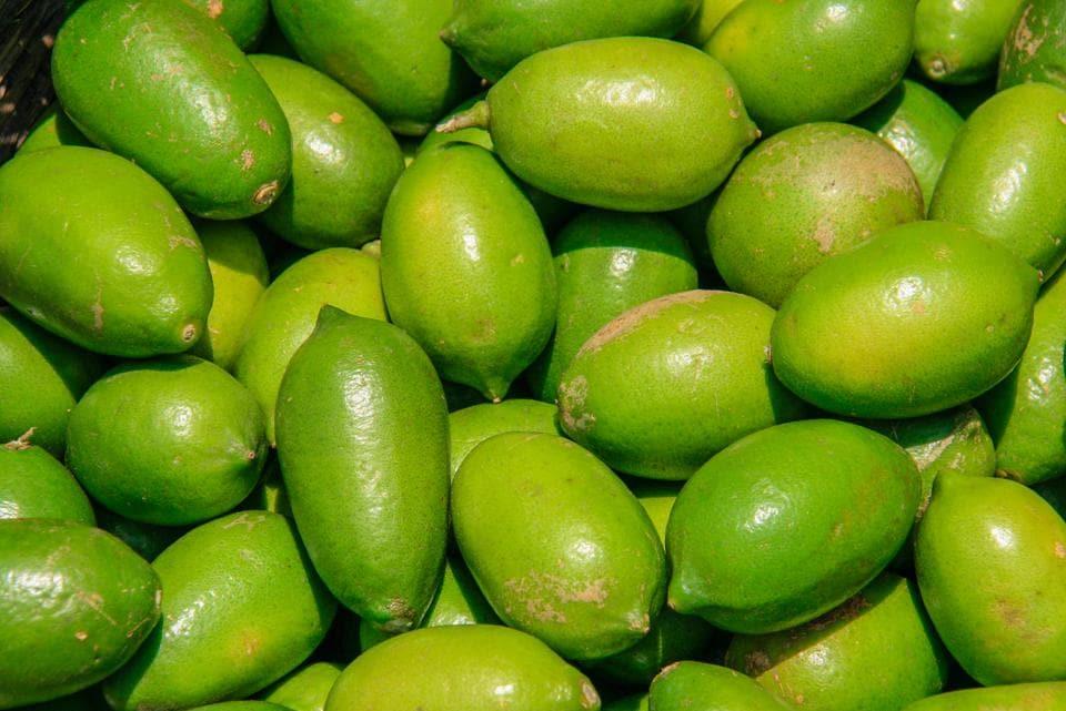 Gondhoraj,lemon,Rangpur