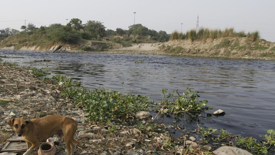 Delhi government to map drains on mobile phone app to quickly plug holes