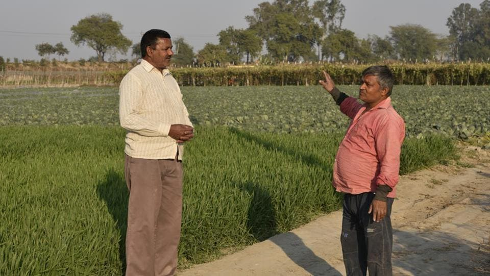 "According to 61-year-old Surinder Singh (L), the availability of a ready market to sell their produce has worked for the farmers of Palla. 44-year-old Pawan Kumar (R), who grows everything from wheat, paddy and all kinds of vegetables, is of the view that agriculture in Palla is a perennially profitable enterprise. ""There is no way a farmer can lose money in Palla even though they get no support from the government,"" he said. (Biplov Bhuyan / HT Photo)"