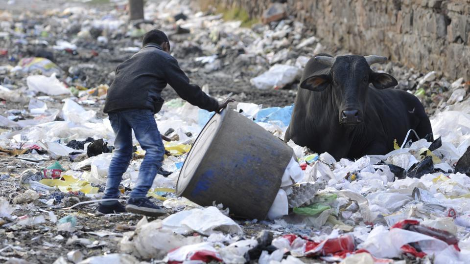 noida authority,waste collection in noida,FONRWA