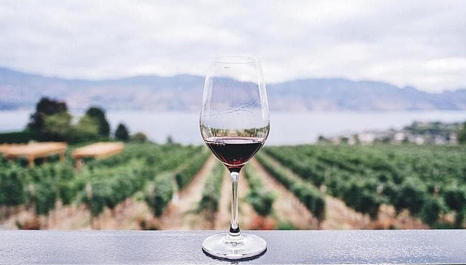 While Turkish wine producers try to increase their footprint globally, Turkish Airlines, which flies to 120 countries, is doing its part to spread the word. It serves an array of Turkish wines. (Unsplash)