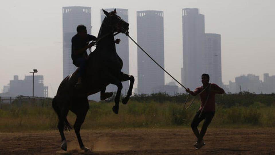 Handlers manage a horse after a training session ahead of the Indian Derby in Mumbai, Maharashtra. (Rafiq Maqbool / AP)