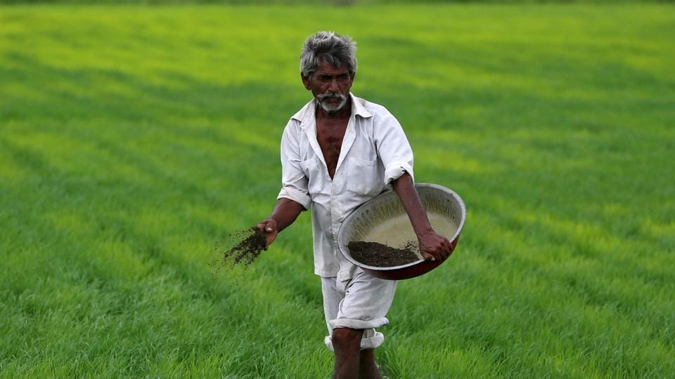 "Admitting ""reduced"" returns in farming, the government in its interim budget on Friday announced a cash-transfer scheme for small farmers, along with a focus on non-crop sectors within agriculture."