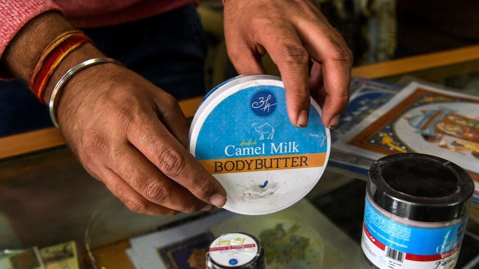 A shopkeeper displays body butter made from camel milk at a camel research farm in Bikaner. Far away in city supermarkets demand for chocolates, soaps and skin creams made from such milk is growing -- a boon for nomads like the Raikas and India's fast disappearing camels. (Chandan Khanna / AFP)