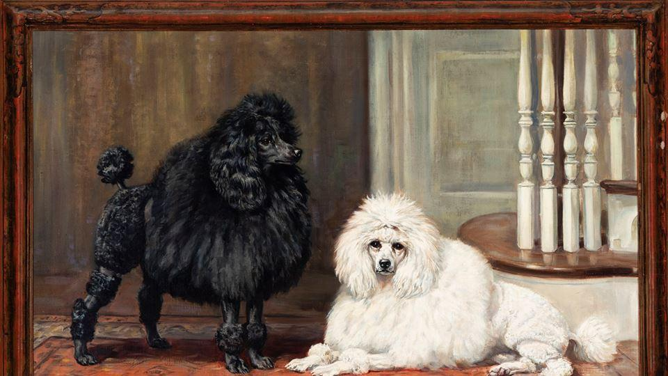 AKC,American Kennel Club,American Kennel Club's museum of the dog
