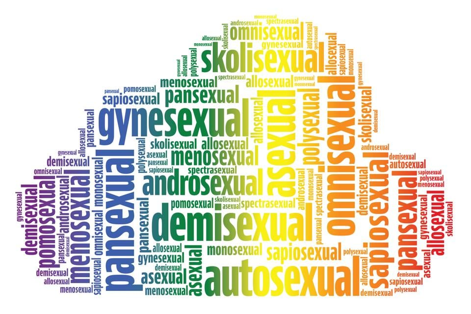 The vocabulary of  sexual orientations is expanding to suit individual emotions and desires that are beyond not just the heterosexual majority, but also that of the lesbian, gay, bisexual, transgender  and queer(LGBTQ) community.