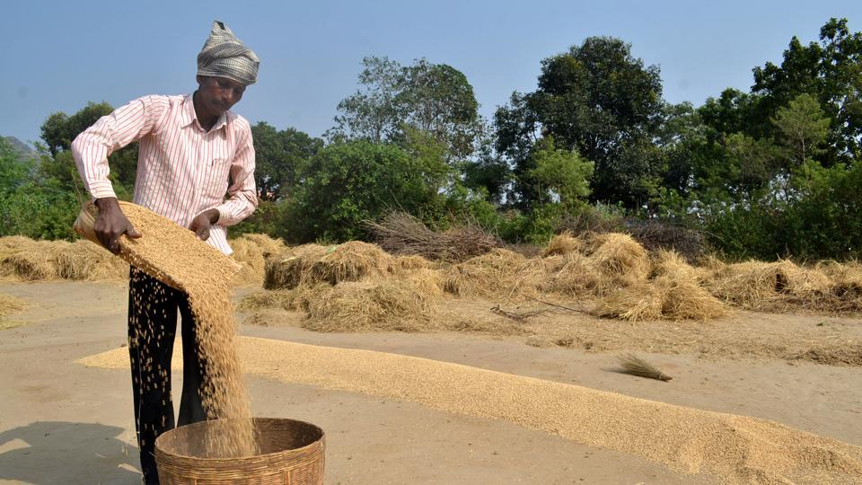 Under the BJP's Pradhan Mantri Kisan Samman Nidhi scheme, farmers (who have below two hectares of land) will receive Rs 6,000 per year. But this amount is insufficient even to buy basic farm inputs. In fact, the Telangana and Odisha governments have initiated far more comprehensive income support plans for farmers.