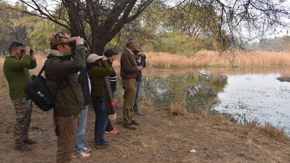 A group of bird watchers at Gurugram-Farrukhnagar road near Sultanpur Bird sanctuary, in Gurugram,  on Sunday, February 3, 2019.