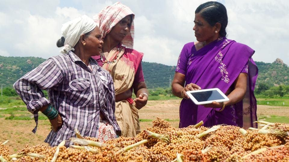 Digital tools have become a critical component of the ICRISAT's mission. In recent years, ICRISAT's use of AI for improved forecasting and advice has proven to increase crop yields and improve crop quality.