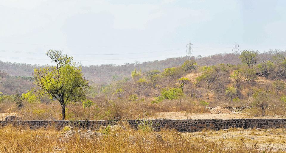 A view of the Bio Diversity Park(BDP) hill in Dukkarkhind on Wednesday.  Most of the land on the hills are owned by private parties who are neither happy to part with their land nor to accept the compensation offered.