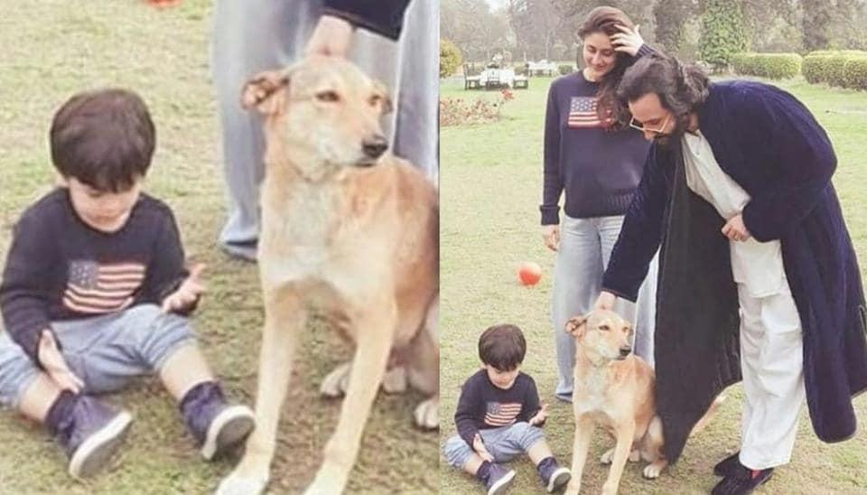 Kareena Kapoor,Saif Ali Khan,Taimur Ali Khan