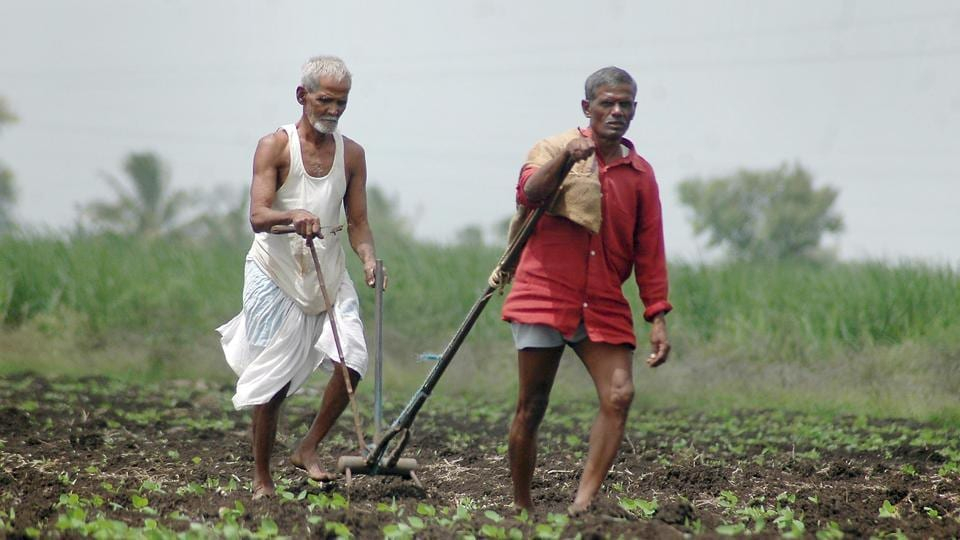 Of the 1.53 crore marginal and small farmers in Maharashtra, 1.2 crore (who have less than 2 hectares of land) are eligible for aid under the PMKSN  scheme announced on February 4.