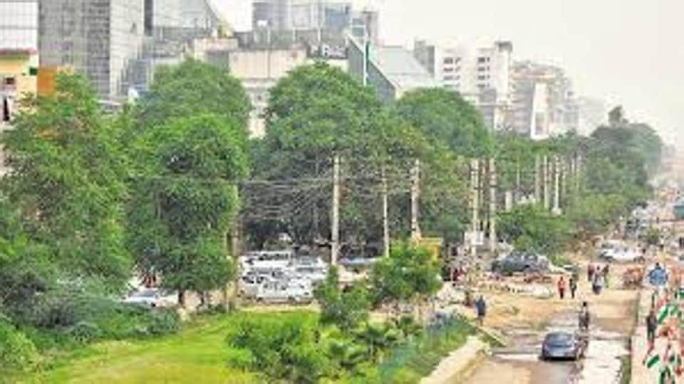 GMDA,tree felling,road-widening