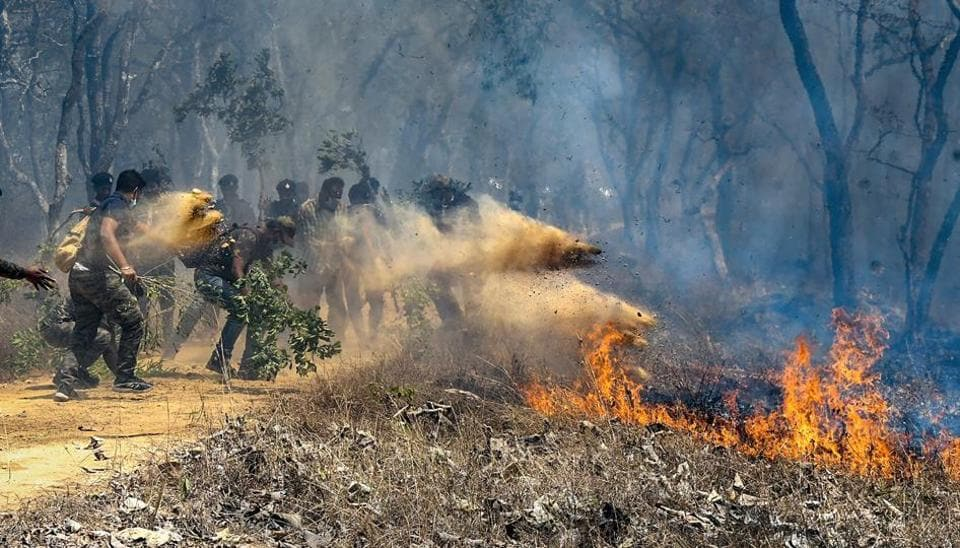 Rescue officials assist in extinguishing a forest fire at Bandipur Tiger Reserve, in Bandipur, Sunday, Feb 24, 2019.